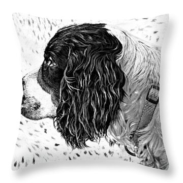 Kaya Wood Carving Filter Throw Pillow by Steve Harrington