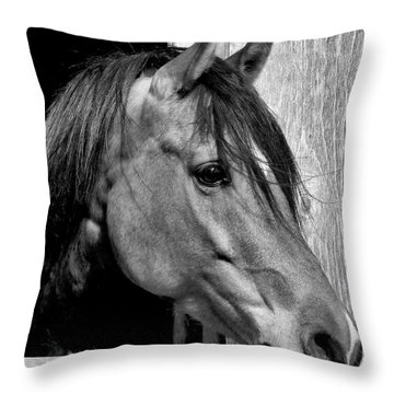 Kazzmeire Throw Pillow