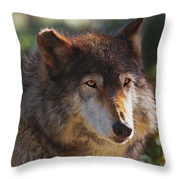 Throw Pillow featuring the photograph Keara  by Brian Cross