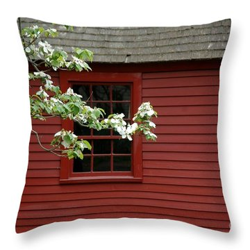 Throw Pillow featuring the photograph Keeney School House by Christiane Hellner-OBrien