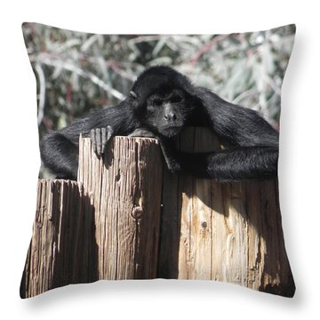 Keep Out Throw Pillow by Chrisann Ellis
