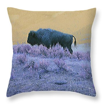 Throw Pillow featuring the photograph Keeper Of The Prairie by Ann Johndro-Collins