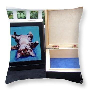 Keepsake Box Throw Pillow by Pat Saunders-White