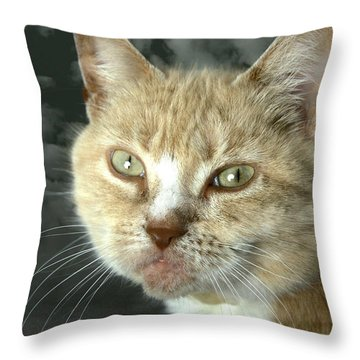 Kello And Clouds Throw Pillow