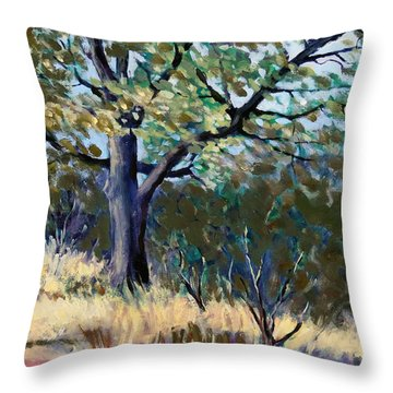 Kelly Ridge Trail Throw Pillow