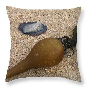 Kelp Float And Velella Throw Pillow