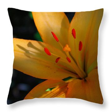 Throw Pillow featuring the photograph Kenilworth Garden One by John S