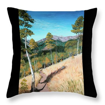 Kenosha Pass - Colrado Trail Throw Pillow