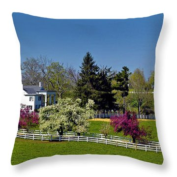 Kentucky Horse Farm Throw Pillow by Randall Branham