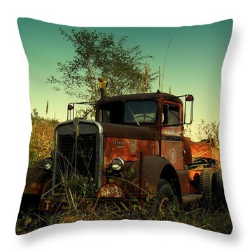 Kenwoth Throw Pillow