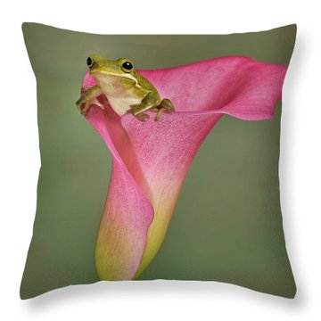 Kermit Peeking Out Throw Pillow