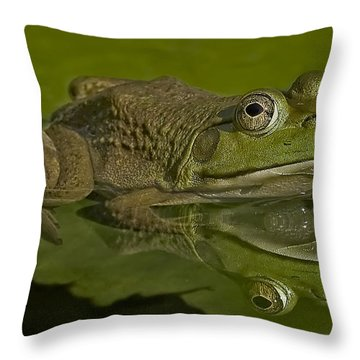 Kermit Throw Pillow by Susan Candelario