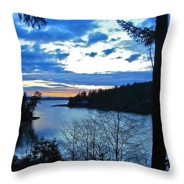 Key Peninsula Throw Pillow by Floria Varnoos