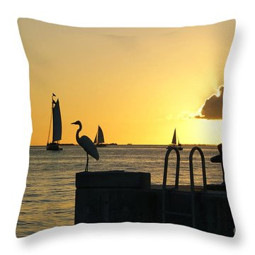 Throw Pillow featuring the photograph Key West Sunset by Olga Hamilton