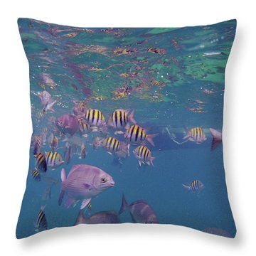 Keys Reef Throw Pillow by Carey Chen