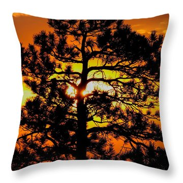 Keystone Pine Throw Pillow