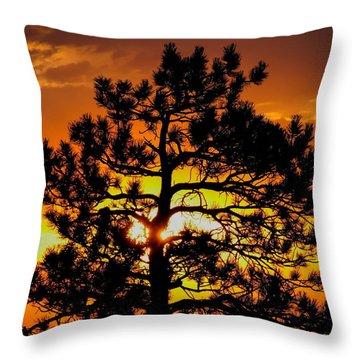 Keystone Pine Throw Pillow