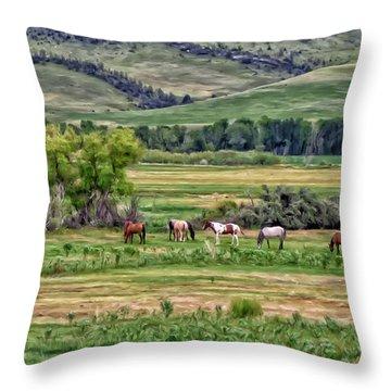 K G Ranch Throw Pillow by Michael Pickett