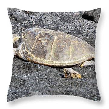 Throw Pillow featuring the photograph Kickin' Back by David Lawson