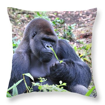 Kicking Back Throw Pillow by Jodi Terracina