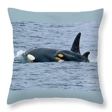 Throw Pillow featuring the photograph Killer Whale Mother And New Born Calf Orcas In Monterey Bay 2013 by California Views Mr Pat Hathaway Archives