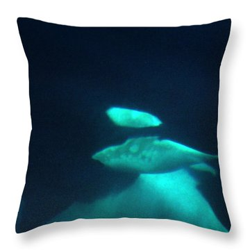 Throw Pillow featuring the photograph Killer Whales Orcas Under Water  Off The San Juan Islands 1986 by California Views Mr Pat Hathaway Archives