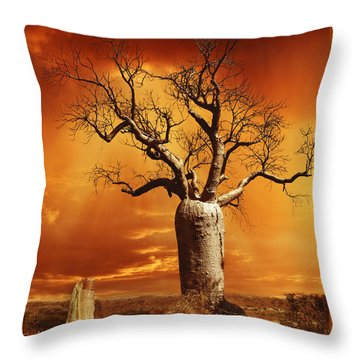 Kimberley Dreaming Throw Pillow by Linda Lees