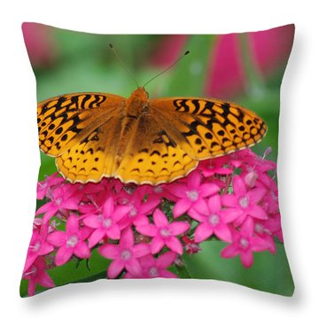 Throw Pillow featuring the photograph Kim's Bosom Buddies Support by Richard Bryce and Family