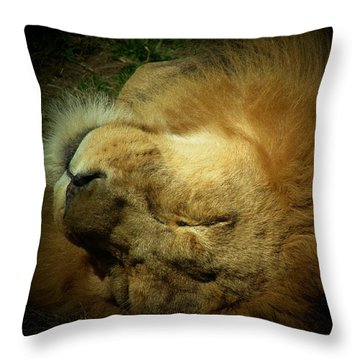 King Of Peace,lion Throw Pillow
