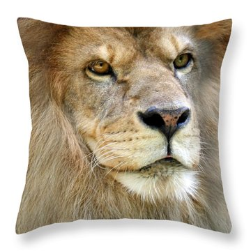 King Of The Beasts Throw Pillow