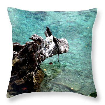 King Of The Blue Lagoon 2 Throw Pillow