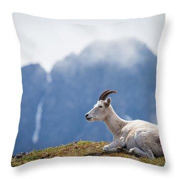 Mountain Prince Throw Pillow