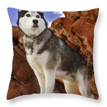 King Of The Huskies Throw Pillow