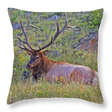 King Of The Meadow Throw Pillow