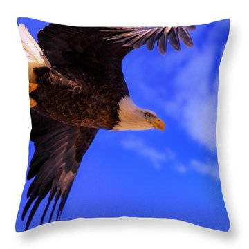 King Of The Sky Throw Pillow
