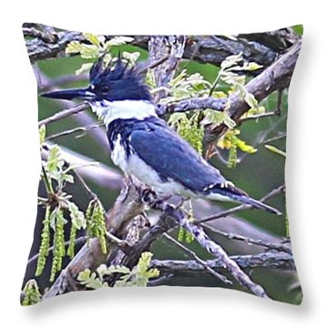 Throw Pillow featuring the photograph King Of The Tree by Elizabeth Winter