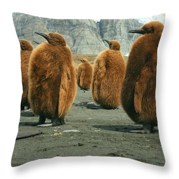 King Penguin Chicks Throw Pillow by Amanda Stadther