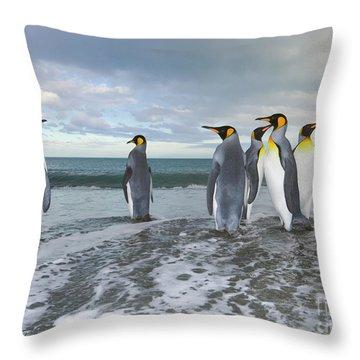 King Penguin In The Surf Throw Pillow by Yva Momatiuk John Eastcott