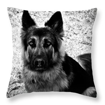King Shepherd Dog - Monochrome  Throw Pillow