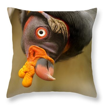 King Vulture Throw Pillow by Mark Bowler