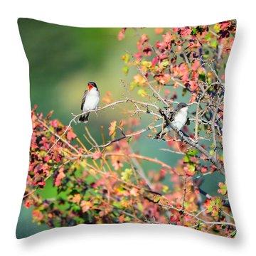 Kingbird Pair Throw Pillow by Greg Norrell