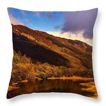 Kingdom Of Nature. Scotland Throw Pillow by Jenny Rainbow