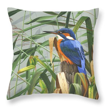 Kingfisher Throw Pillow by Clive Meredith