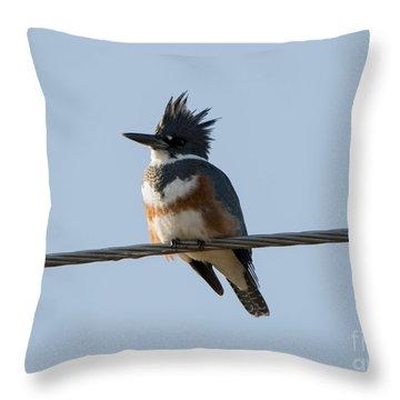 Kingfisher Profile Throw Pillow