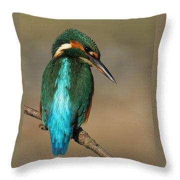 Kingfisher1 Throw Pillow
