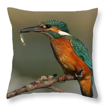 Kingfisher2 Throw Pillow