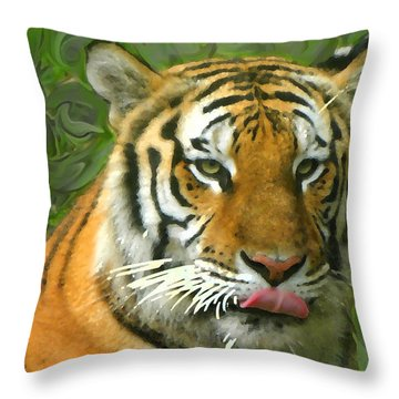 Throw Pillow featuring the photograph Kisa Painted by Sandi OReilly