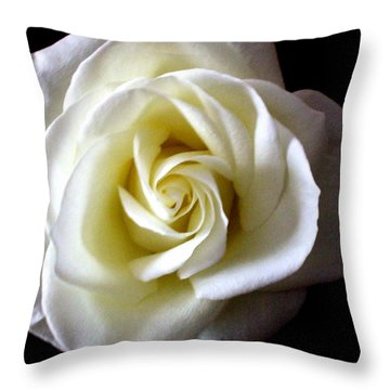 Throw Pillow featuring the photograph Kiss Of A Rose by Shana Rowe Jackson