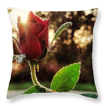 Throw Pillow featuring the photograph Kiss Of The Ross by Tyson Kinnison