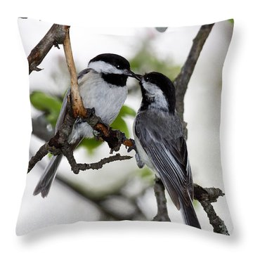 Kissing Chickadees Throw Pillow